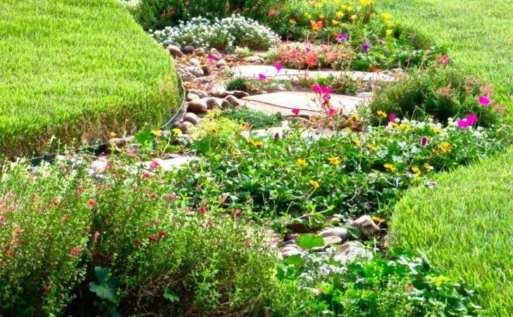 Nature Garden Reducing Your Lawn Beautiful Alternatives