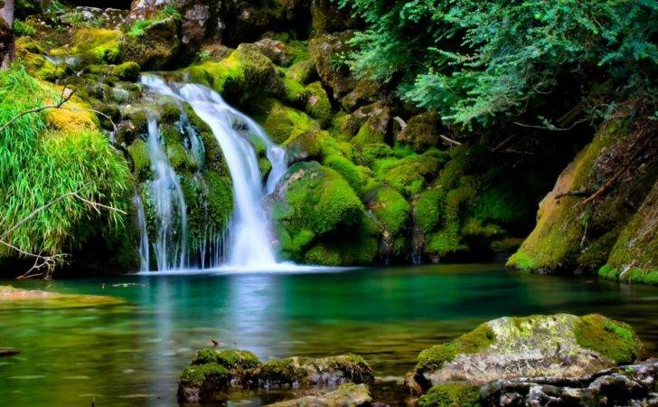Nature Most Beautiful Collections