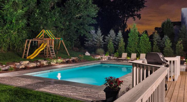 Need Privacy Best Plants Around Pools Neave