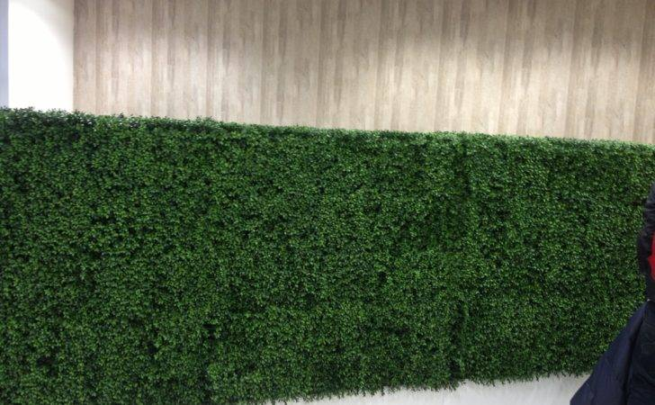 New Generation Artificial Boxwood Hedge