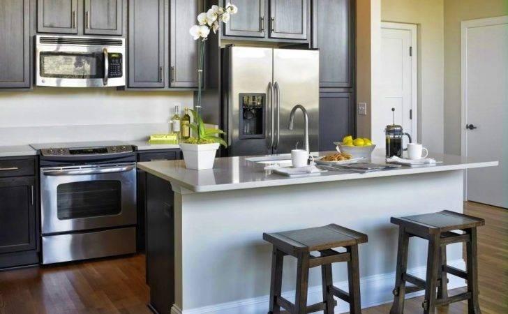Nice Apartments Foxy Modern Kitchen Designs Condos Florida Condo