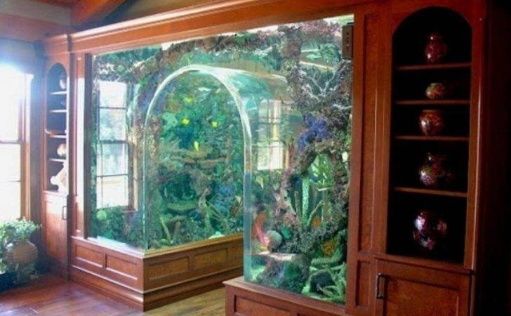 Not Only Refreshing Aquarium Furniture Keep Your