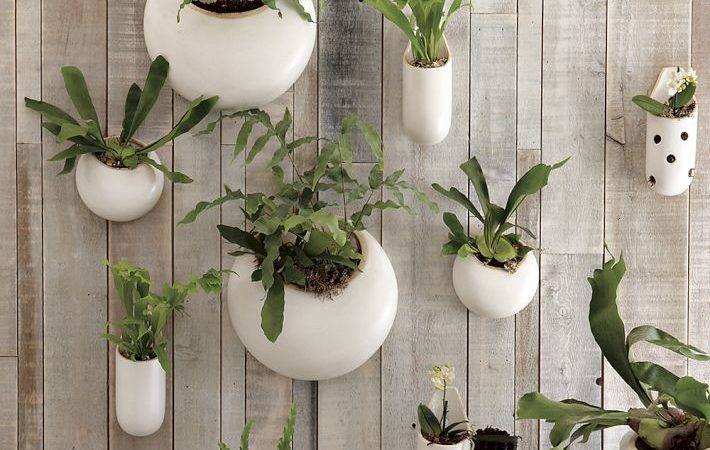 Objects Design Ceramic Wall Planters