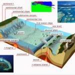 Ocean Basins Part Features Floor Continental Margin