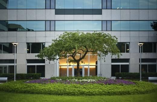 Office Building Landscape Management
