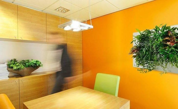 Office Interior Wall Innovative New Idea Suite