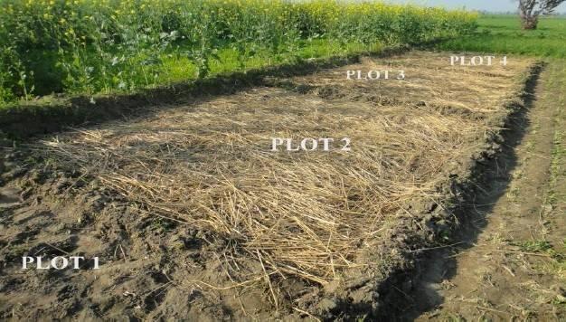 Optimising Agro Waste Mulching Alternative Power Generation