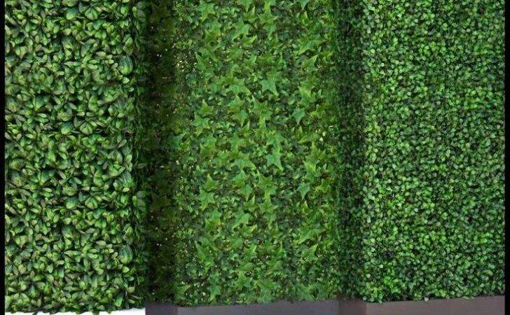 Outdoor Artificial Hedges Html Pinterest