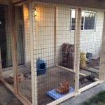 Outdoor Cat Area Catio Ideas Pinterest