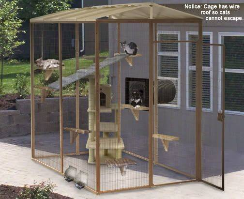 Outdoor Cat Enclosures Connected House