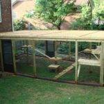 Outdoor Cat Enclosures Getting Cats Outside Safely Savvy Pet Care