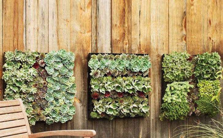 Outdoor Living Wall Planters Green Head