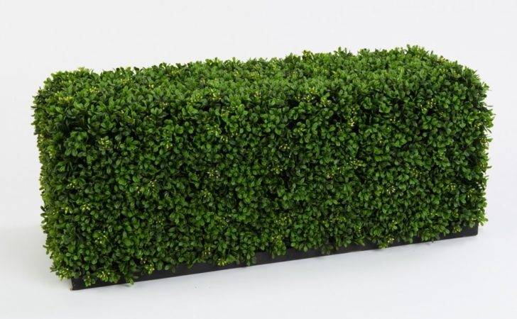 Outdoor Plants Hedging Artificial Boxwood Hedge Plinth