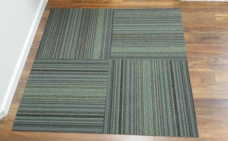 Overstock Carpet Huge Modern Stylehive