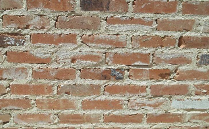 Packer Brick Reclaimed Antique