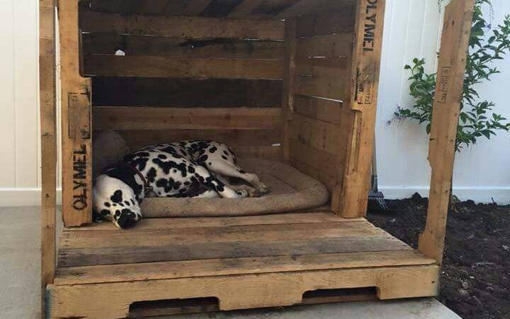 Pallet Dog House Pinterest Yard Houses Bed