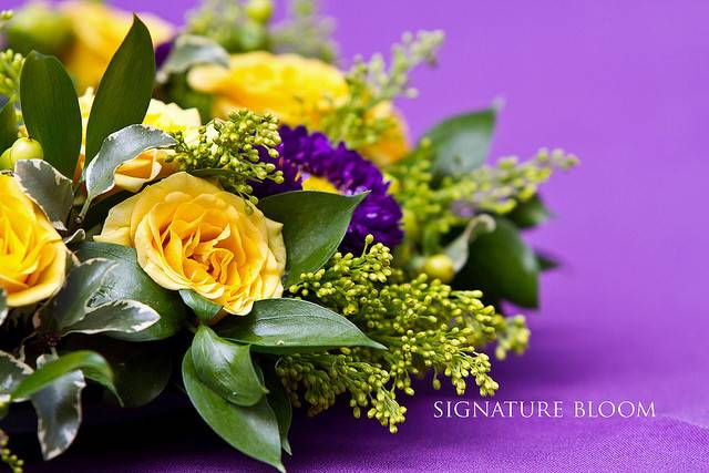 Palo Alto Yellow Purple Arrangements Flickr Sharing