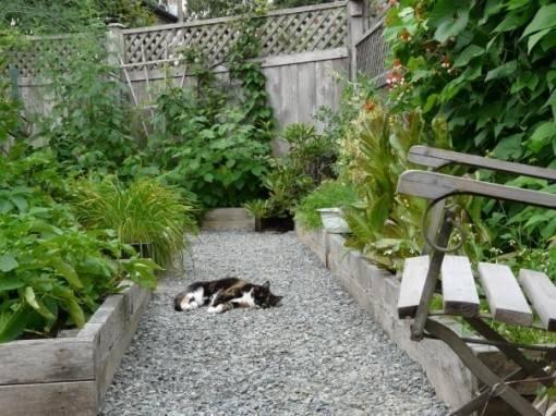 Paper Mulch Alternative Landscape Fabric Cultivate Garden
