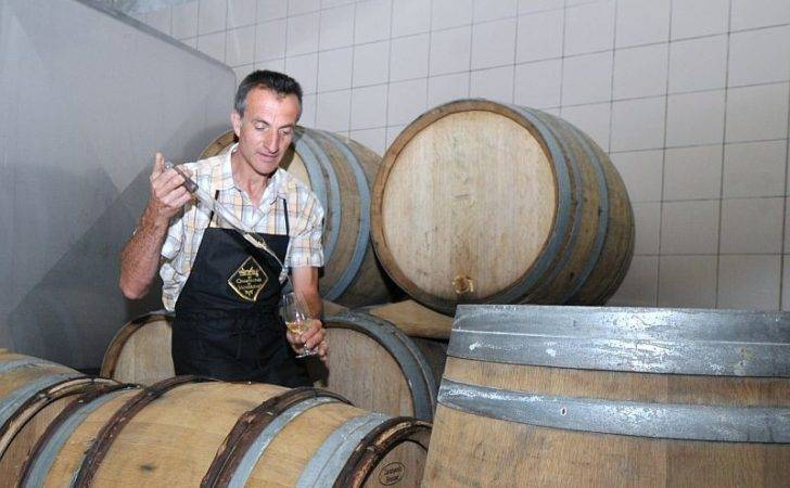 Patrick Manceaux Agn Givry Champagne Oenologist
