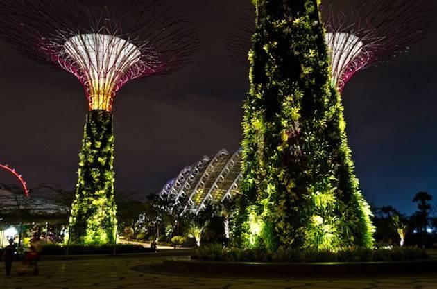 Penccil Design Gardens Garden