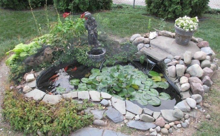 Photos Koi Fish Pond Design Backyard Large Fun Ideas