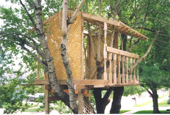 Photos Treehouse Plans Build Woodworking