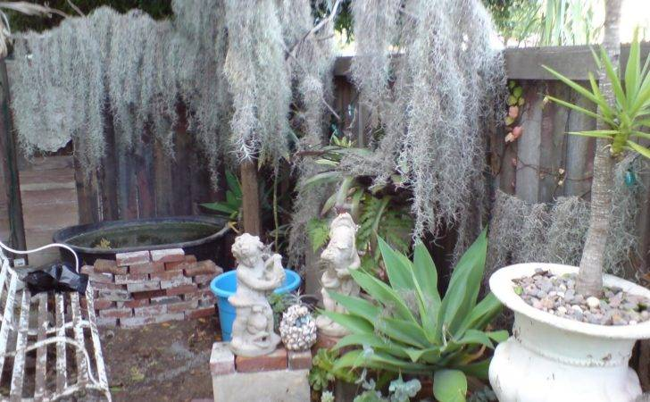 Php Classifieds Grotto Fountain Landscape Designs