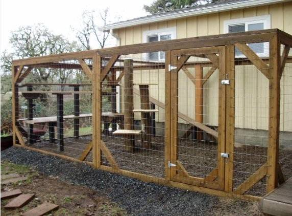 Pics Photos Building Cat Enclosure
