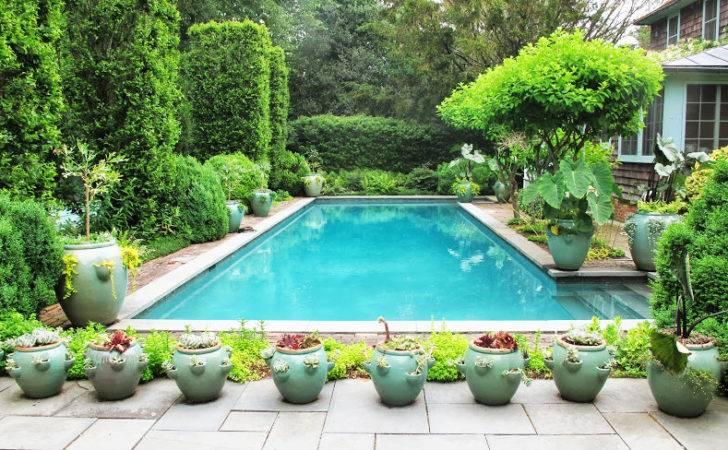 Pics Photos Potted Plants Around Swimming Pool