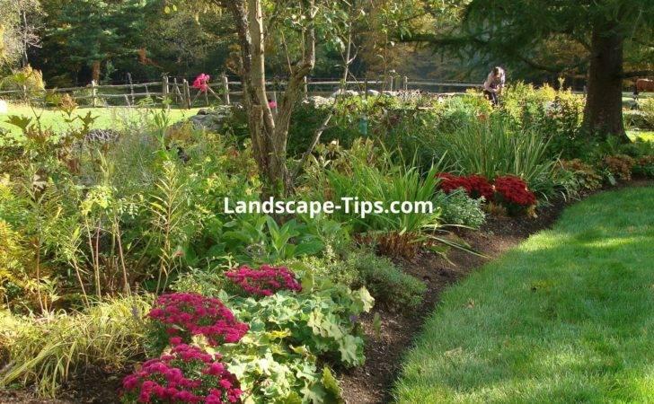 Pin Driveway Landscaping Ideas Create Asphalt Driveways