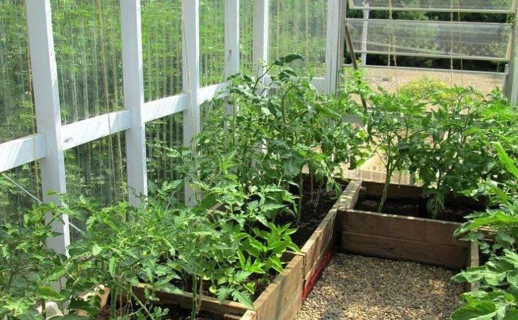Pinterest Backyard Greenhouse Diy Ideas