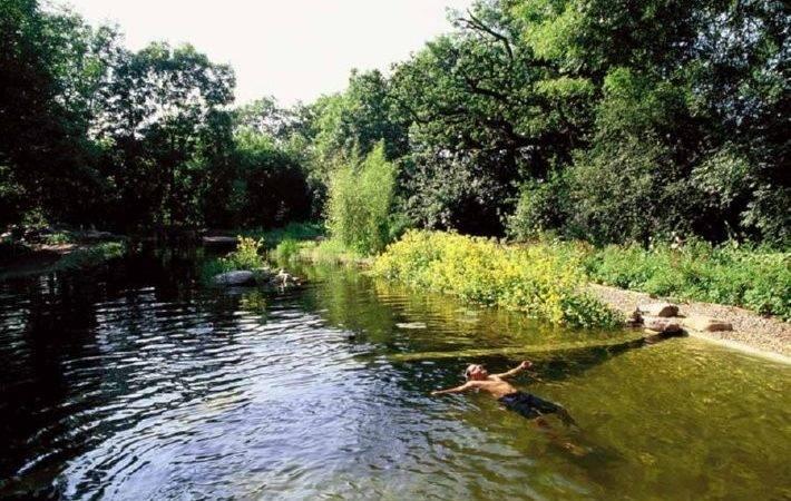 Pirates Internet Valley Natural Swimming Pools