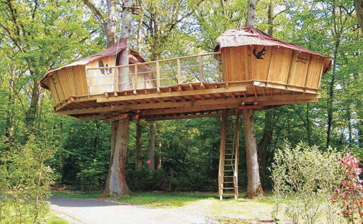 Plans Designs Diy Treehouse Adult Tree Houses House