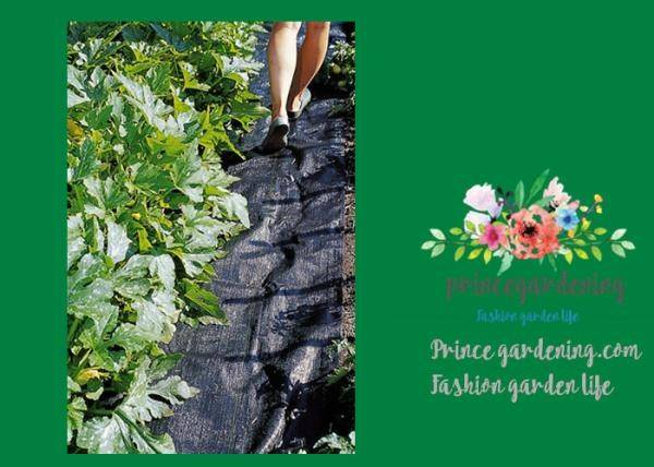 Plant Accessories Tear Proof Weed Block Fabric Control