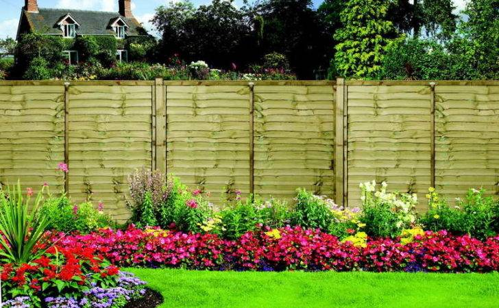 Plant Fence Ideas Peace Mind Spring Gardening