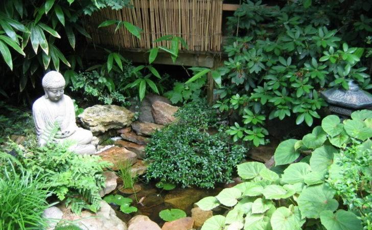 Plant Japanese Garden