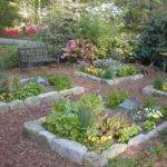 Plant Your Vegetable Garden Hgtv