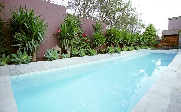 Plants Around Pools Natural Rock Swimming Pool