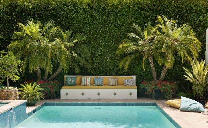 Plants Around Pools Prepossessing Poolside Gardens
