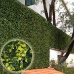 Plants Artificial Boxwood Mat Hedges Synthetic