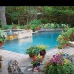 Plants Can Pools Area Container Gardens Decor Potted