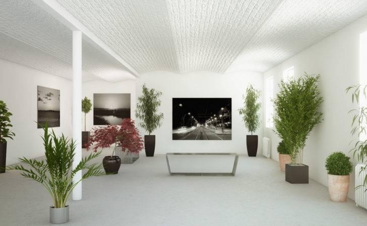 Plants Decors Interior