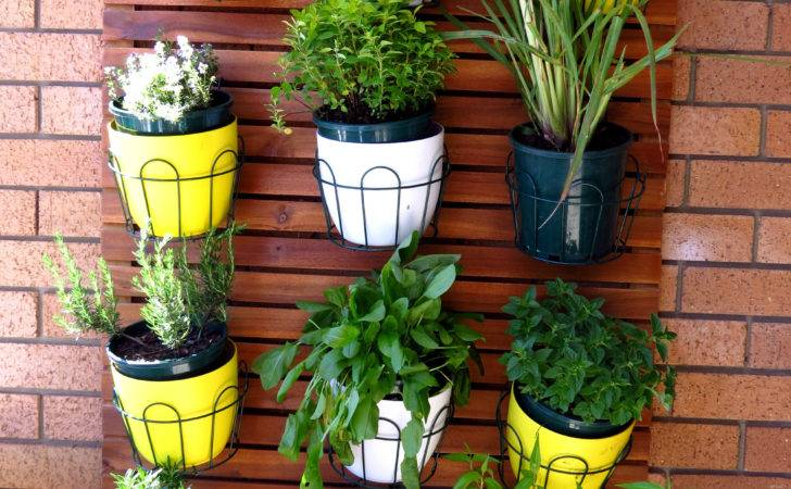Plants Grow Best Balcony Garden Myproductivebackyard