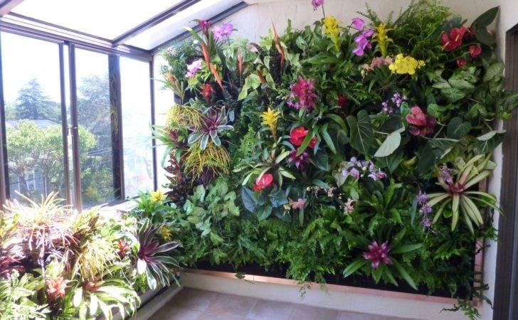 Plants Walls Vertical Garden Systems June