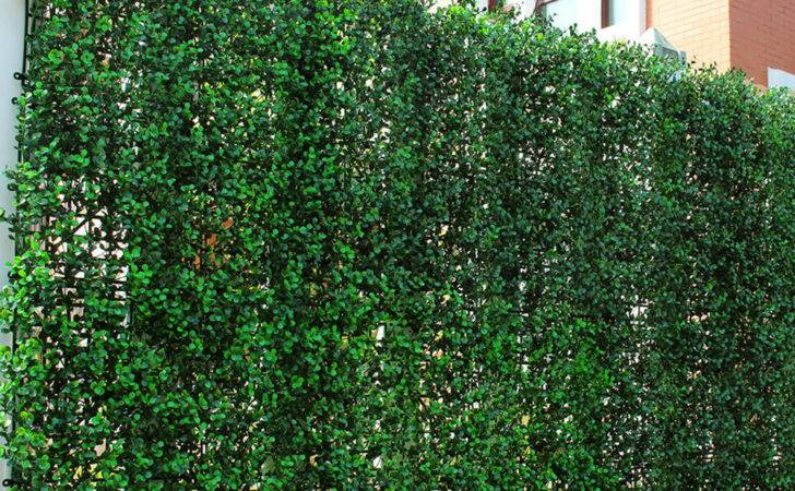 Plastic Boxwood Fencing Pcs Artificial Hedge Panels