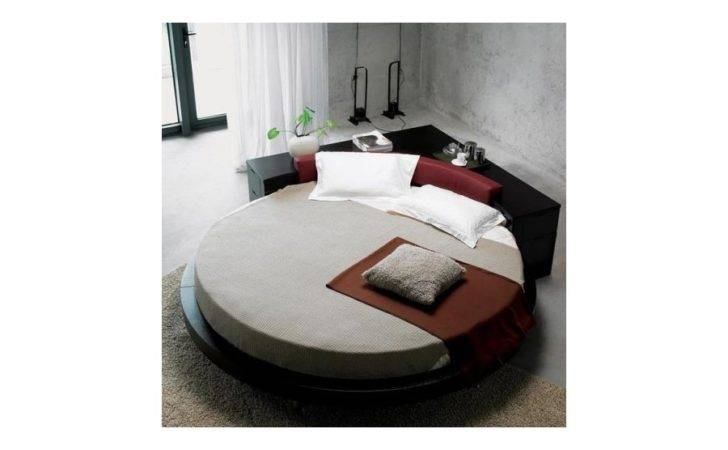 Plato Modern Round Bed Frames Contemporary Beds