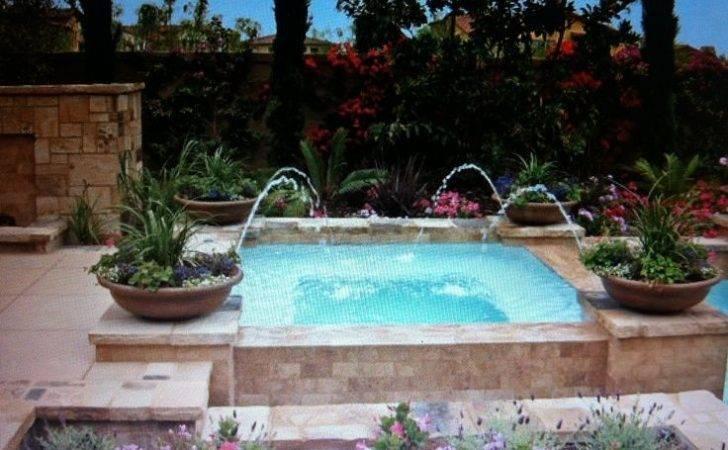 Plunge Pool Design New House Pinterest