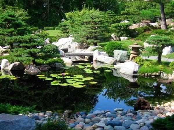 Pond Japanese Garden Usually Has Koi Fish