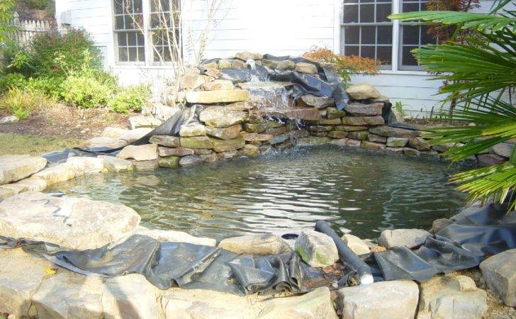 Pond Liners Koi Fish Care Info