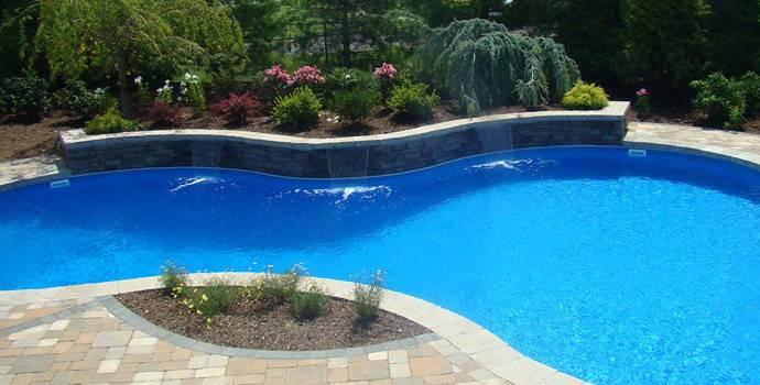 Pool Design Best Plants Plant Around Your Swimming